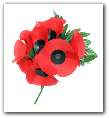 Image result for poppy appeal png